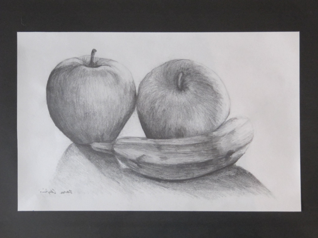 Stell life sketch fruits still life drawings in pencil still life drawing of fruits pencil